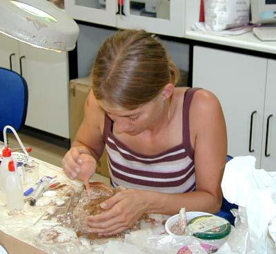 Restoring fresco fragment